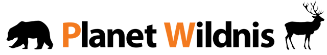 Planet Wildnis logo